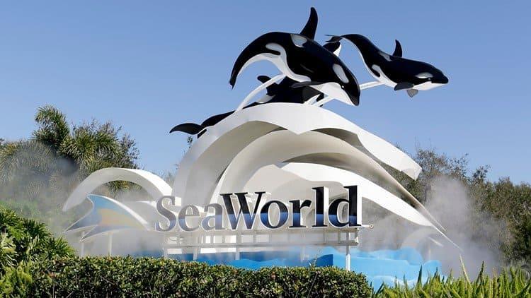 DoubleTree by Hilton at Seaworld Orlando