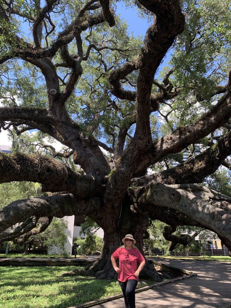 JacksomvilleTree e1569032951217 768x1024 - 7 Best Spots to Visit in Jacksonville Florida