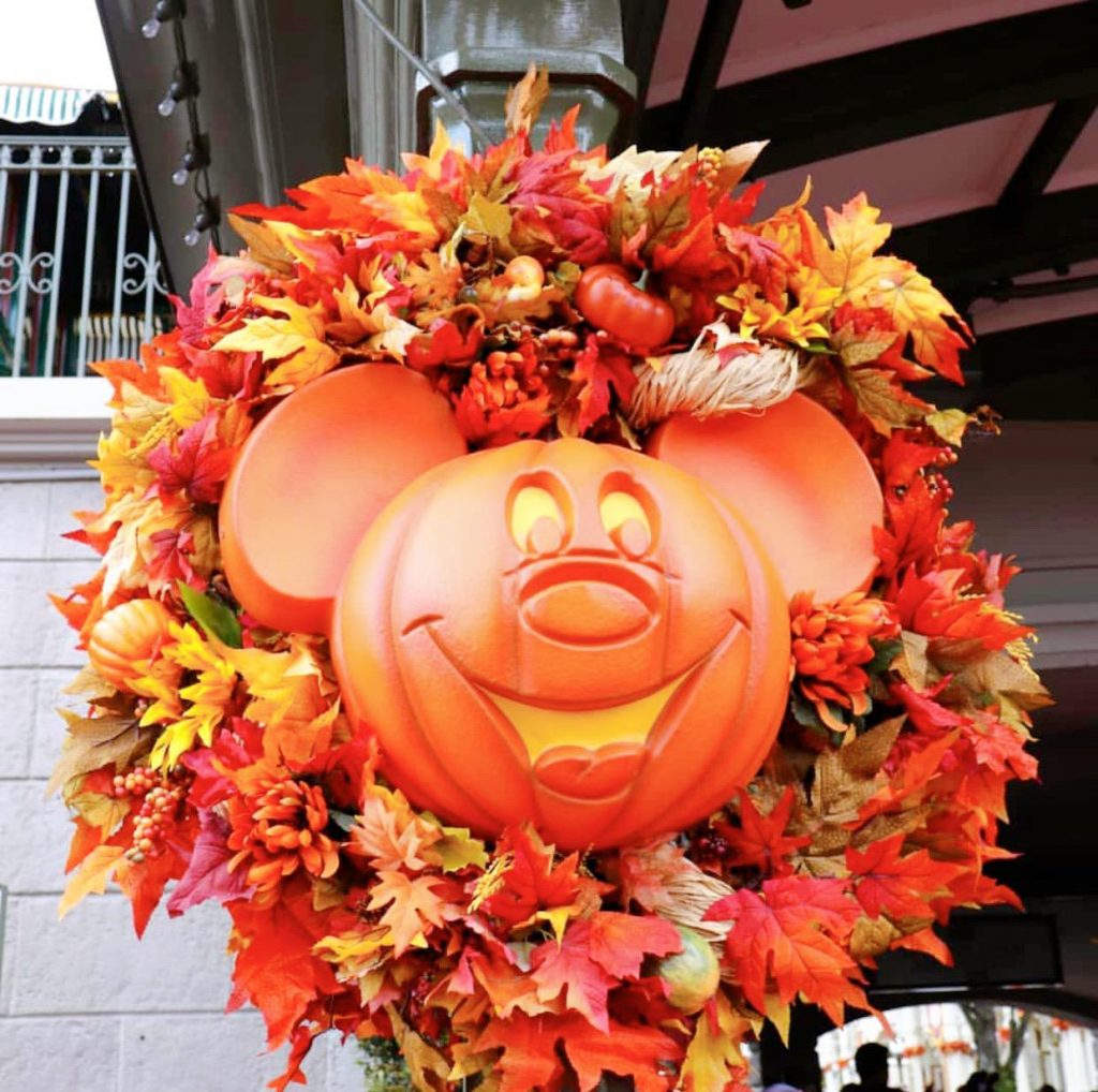 Pumpkin with orange flowers in Disney