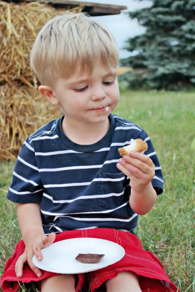 gourmet smores buffet 10 683x1024 - Gourmet S'mores Buffet and Milk Chocolate