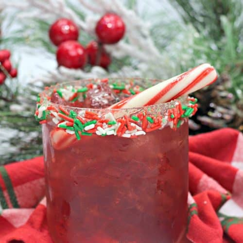 Santa Cocktail – The Perfect Drink This Holiday Season
